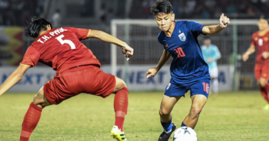 ทีมชาติไทย - เวียดนาม